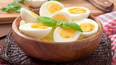صورة دراسة تكشف سراً خطيراً عن أكل البيض!