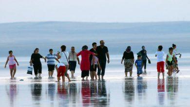 """صورة بحيرة الملح بتركيا.. """"جنة طيور"""" الفلامينغو في حوض المتوسط .. أصبحت مسرحا لتصوير الأفلام والأغاني"""