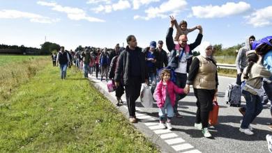 صورة منظمة دولية تكشف حقائق هامة حول قرار الترحيل في الدنمارك وأخرى تتوعد بانفراج قريب .. وهذه التفاصيل !