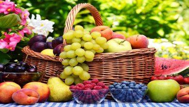 صورة أبرزها الكرز والبطيخ .. أهم الفواكه الصيفية المفيدة التي تجعل صيفك الحار بارداً