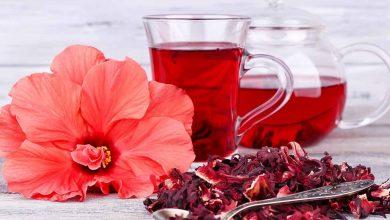 صورة من بينها الكركديه واليانسون .. أبرز خمسة أعشاب عربية وفوائدها