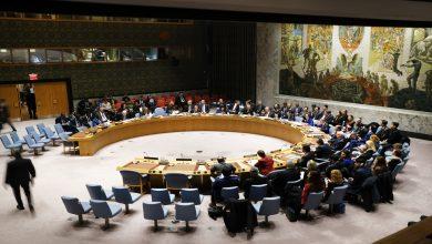 صورة مع اقتراب موعد انتهاء آلية إيصال المساعدات إلى سوريا .. رئيس مجلس الأمن يرفع راية التحدي والإصرار وهذا ما سيفعله !